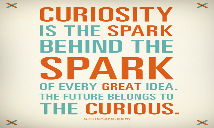 Curiosity is the spark behind the spark of every great idea. The future belongs to the curious.
