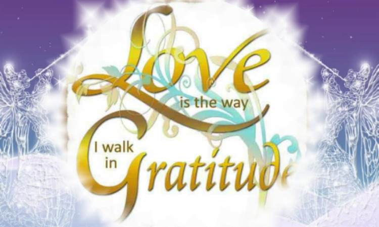 Love Is The Way I Walk In Gratitude
